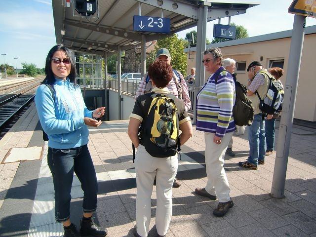 Herbstwanderung 2010 Alzey Wingert (1)