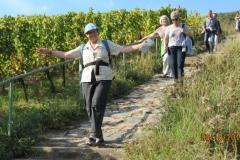 Herbstwanderung 2011 (4)