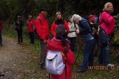 Herbstwanderung Boppard 2012 (11)