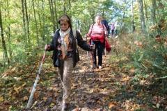 DIF Herbstwanderung Herrstein (24)