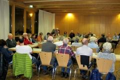 DIF Mitgliederversammlung 2015 (11)