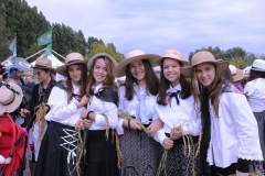 Reisfest in Isola della Scala 2015 (17)