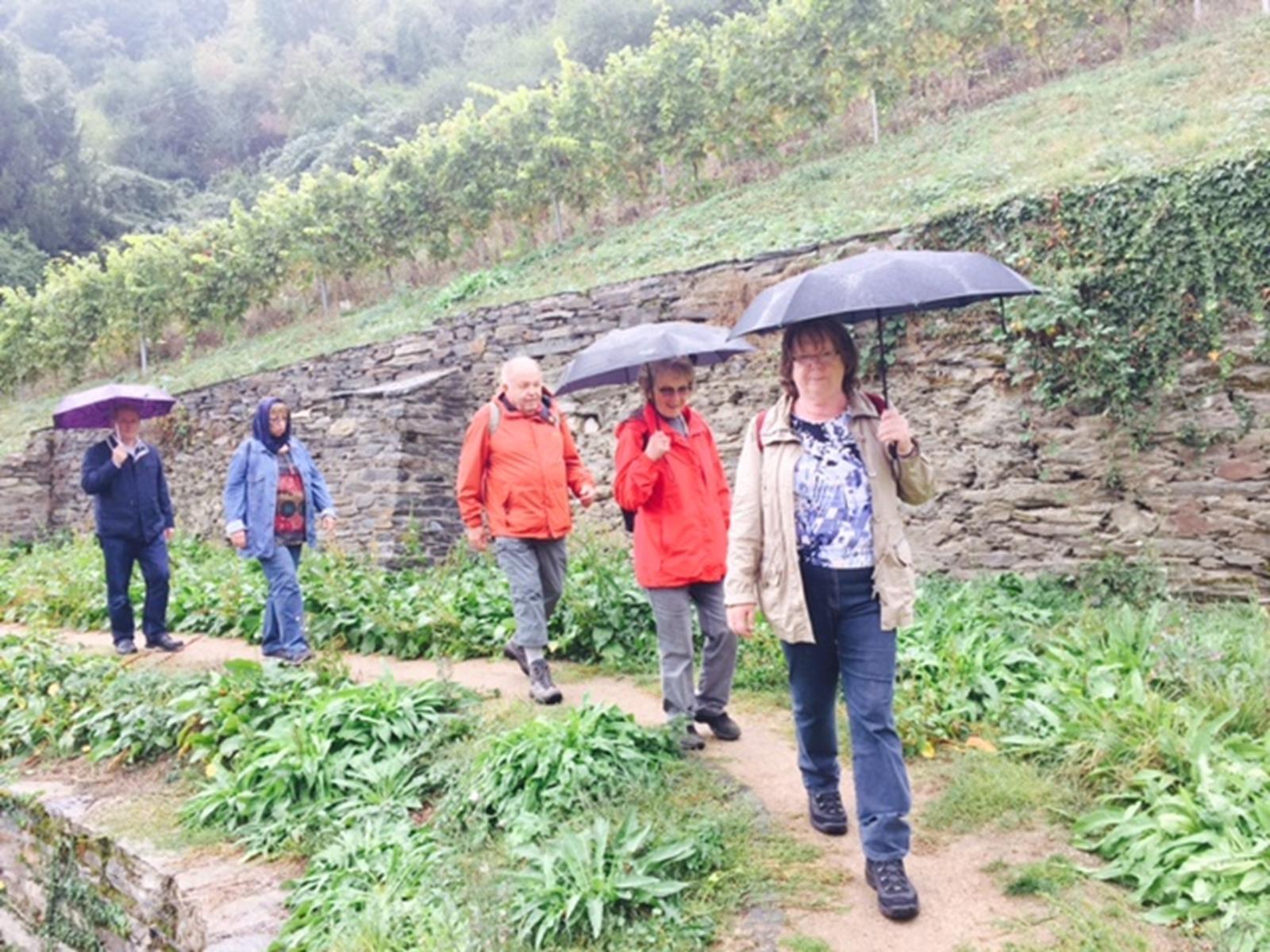 DIF Herbstwanderung Oberwesel 2016 (68)