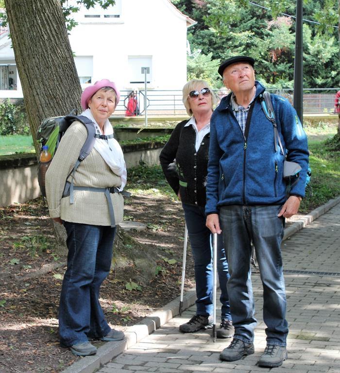 DIF Herbstwanderung 2017 (19)