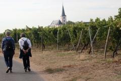 DIF Herbstwanderung 2018 Hochheim (30)
