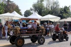 Reisfest in Isola (11)