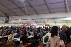 Reisfest in Isola (25)